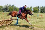 В Волгоградской области проведут фестиваль традиционной казачьей культуры: Традиции: Моя страна: Lenta.ru