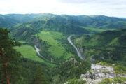 В заказнике Алтайского края презентовали особо охраняемые природные территории: Достижения: Моя страна: Lenta.ru