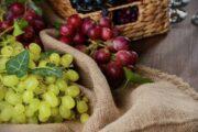 На аукционе в Японии гроздь винограда продали за рекордную сумму