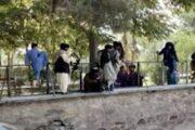 Животные в зоопарке Кабула оказались на грани смерти из-за прихода «Талибана»: Общество: Мир: Lenta.ru