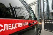 В Новосибирске проверят сообщения об отказе таксиста везти девушку-инвалида